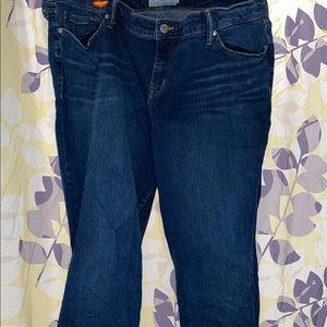 Torrid 26T bootcut jeans
